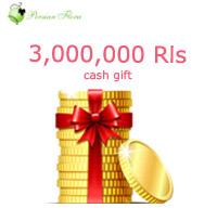 3,000,000 Rls<br>money transfer