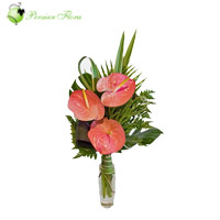 Glass Vase of  Anthurium