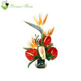 Glass Vase of  Anthurium, Strelitzia