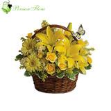 Basket of  Lily, Rose, Gerbera, Alstremeria, Filler
