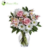 Glass Vase of  Rose, Marguerite, Alstremeria