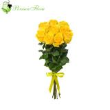 Wrap of  Rose