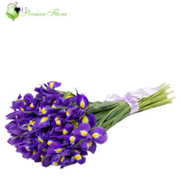 Bouquet of Iris