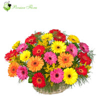Basket of  Gerbera, Filler