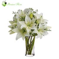 Glass Vase of  Lily, Filler