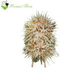 Stand of Strelitzia, Gladiolus